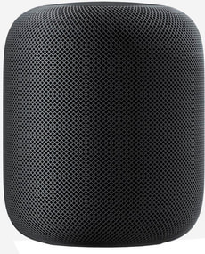 HomePod - Spacegray (D-Version)