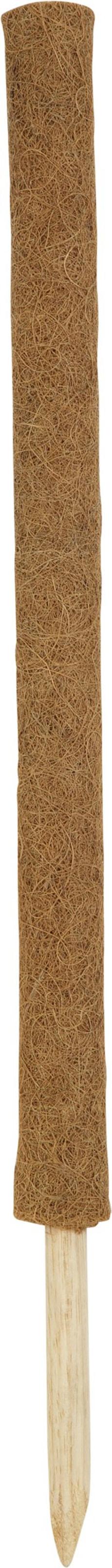 Kokos Pflanzenstab