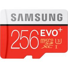 Carte mémoire Evo Plus microSDXC 256 GB