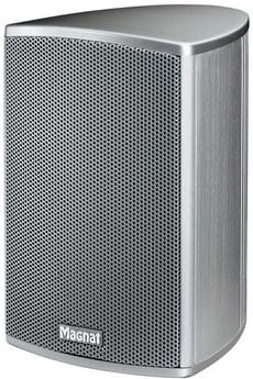 Needle Alu Sat (1 Paar) - Silber