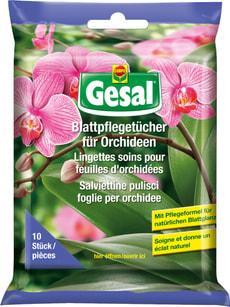 Salviettine pulisci foglie per orchidee, 10 salviettine