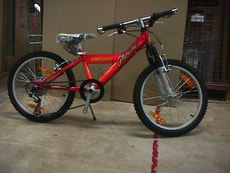 "DRUG BIKE 20"" MTB 6G ROT"