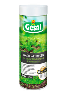 Nachsaat-Rasen, 380 g