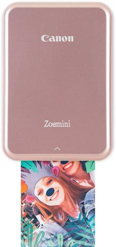 Zoemini or rose