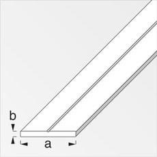Barre plate 2 x 19.5 mm PVC blanc 1 m