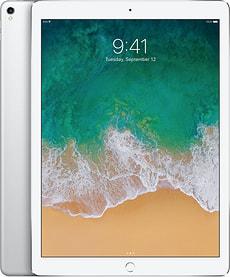 iPad Pro 12 WiFi 256GB silber