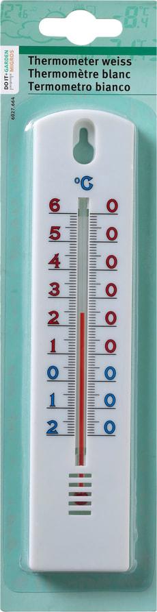 Termometro bianco
