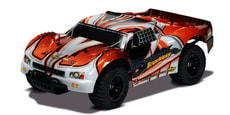 Desert King RC Truggy