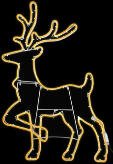 LED Hirsch
