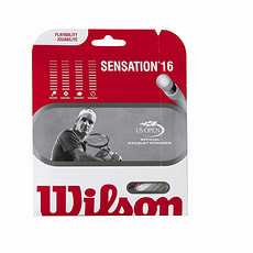 Sensation 16
