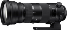 150-600mm F/5.0-6.3 DG OS HSM Sport für Nikon