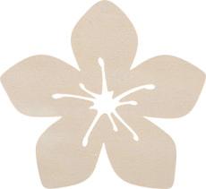 Hawaii Aloa-Blume gross