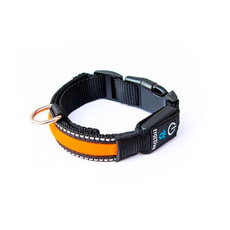 Tractive LED Dog Collar, large, orange