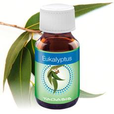 Eukalyptus 3x 50 ml