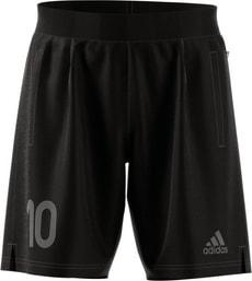 Tanip Shorts