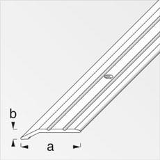 Abschluss-Profil 30 x 5 mm silberfarben 1 m