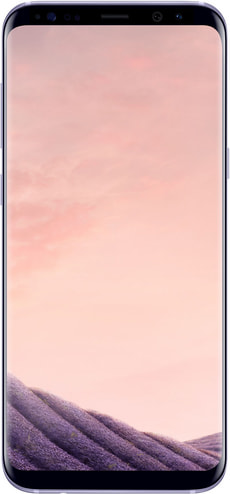 Galaxy S8+ 64GB grau