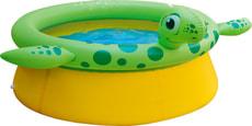Animal Pool Turtle