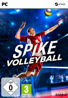 PC - Spike Volleyball D/F