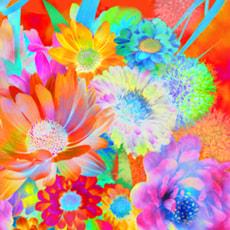 Avantgarde Serviettes Saison, 20 pcs. 25x25 cm, Colour Vision