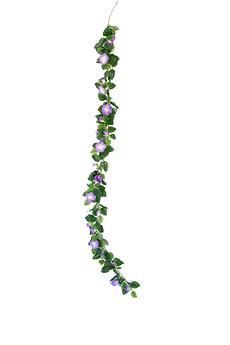 Petunien Girlande violett-weiss