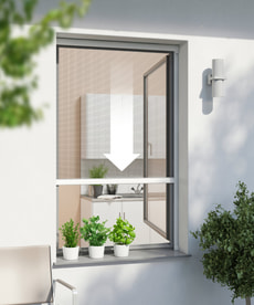 Insektenschutz Fensterrollo Plus
