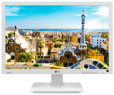 "22"" Business Monitor 22BK55WD-W"