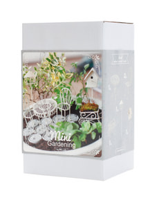 Mini-Gardening Romantic Box 6-teilig