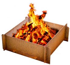 Bol de feu Merian
