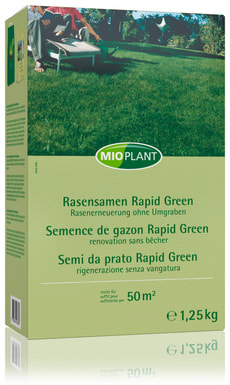 Rasensamen Rapid Green, 50 m2
