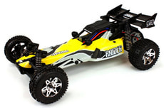 Raider RC Buggy