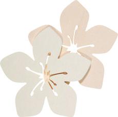 Hawaii Aloa-Blume klein