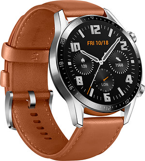 Watch GT 2 Classic Pebble Brown