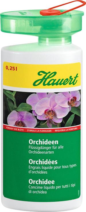Orchidee concime liquido, 0,25 l