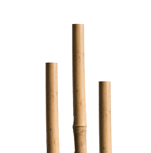 Sostegno di bambù