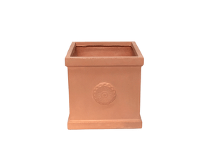 Terralite New Quadro Pot avec Rose