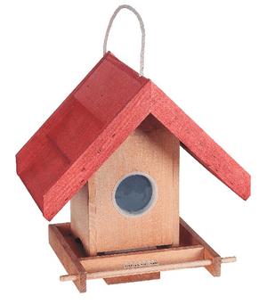 Casa uccelli First