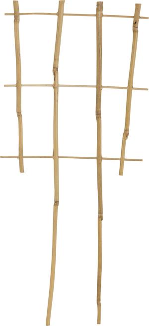 Puntelli per pianti di bambù
