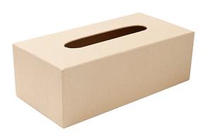 Kosm. Tuchbox, Pappm.