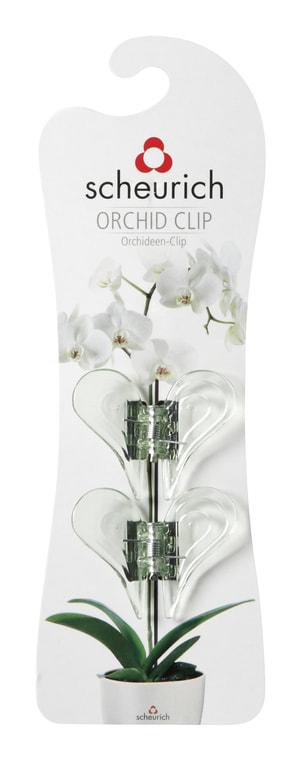 Clips pour orchidées