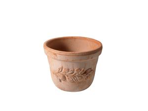 Topf Terracotta OLIVE