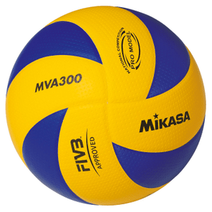MVA300