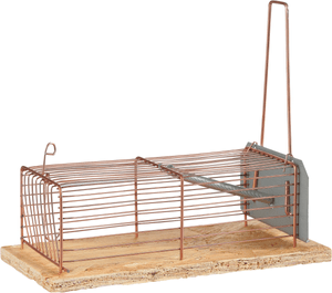 Cage metall-trappe souris