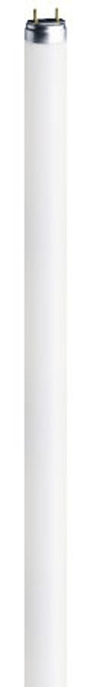 FL Roehre G5 14W 840