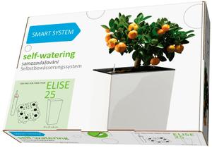 Smart System Elise