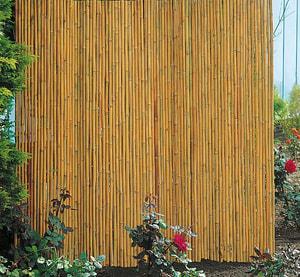 Pannello fendivista in bambù