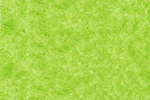 Dekofolien selbstklebend grün