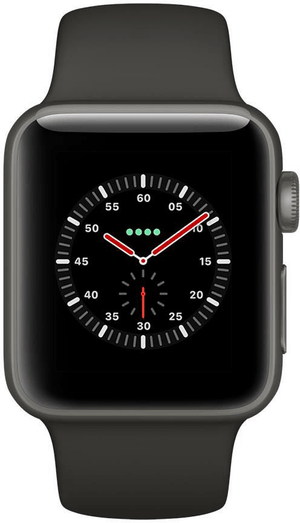 Watch Edition GPS/LTE 42mm gray/black