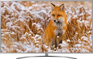 43UM7600 108 cm 4K Fernseher