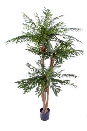 Kunstpflanze Cycas 3er Stamm